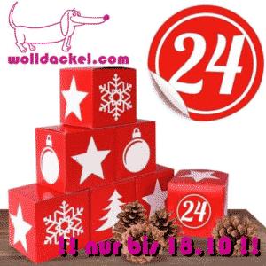 Ein Strang handgefärbte Wolle mit dem Namen Adventskalender 2020 von Wolldackel