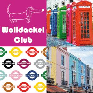 Ein Strang handgefärbte Wolle mit dem Namen Wolldackel Club – London Calling von Wolldackel