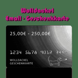 Ein Strang handgefärbte Wolle mit dem Namen Wolldackel E-Mail Geschenkgutschein von Wolldackel