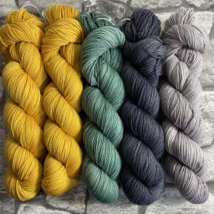 Ein Strang handgefärbte Wolle mit dem Namen Slipstravaganza – Kit 22 von Wolldackel
